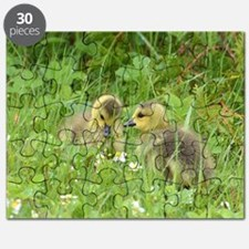 Goslings in clover Puzzle