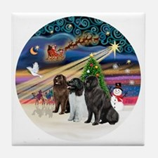 2-Xmas Magic - Newfoundland (THREE) Tile Coaster