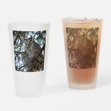 2-Owls-1 074 Drinking Glass