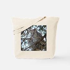 2-Owls-1 074 Tote Bag