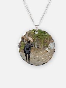 11x11_pillow  4 Necklace