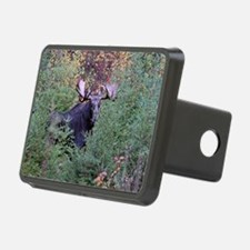 9x12_print   5 Hitch Cover