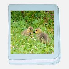 Goslings in clover baby blanket