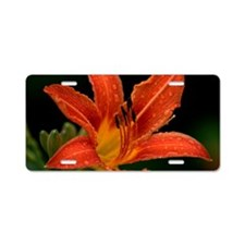 Tiger Lily Aluminum License Plate