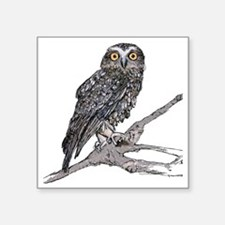 """Southern Boobook Owl Square Sticker 3"""" x 3"""""""