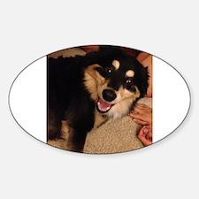 finnish lapphund puppy happy Decal