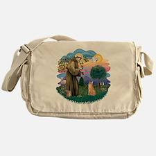 St Francis (ff) - Orange Tabby cat Messenger Bag