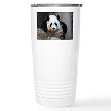 IMG_9027 Travel Mug