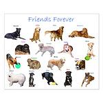 CaninenCancerAwareness Small Poster