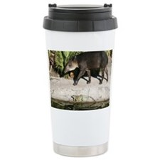 IMG_2456 Travel Coffee Mug