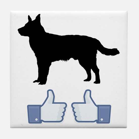 Australian-Cattle-Dog07 Tile Coaster