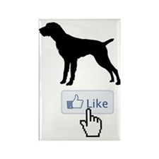German-Wirehaired-Pointer20 Rectangle Magnet