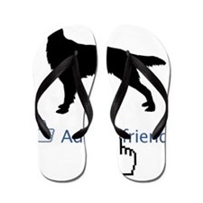 Irish-Red-&-White-Setter13 Flip Flops