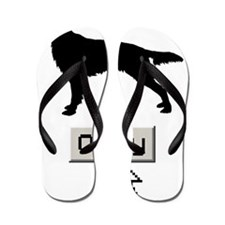Irish-Red-&-White-Setter15 Flip Flops