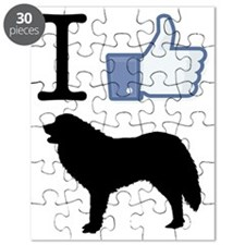 Great-Pyrenees26 Puzzle