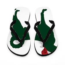 Kangal-Dog23 Flip Flops