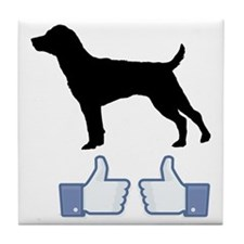 Patterdale-Terrier07 Tile Coaster
