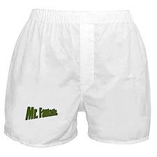 Mr. Fantastic Boxer Shorts