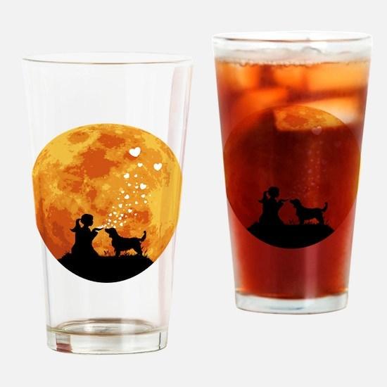 Welsh-Springer-Spaniel22 Drinking Glass