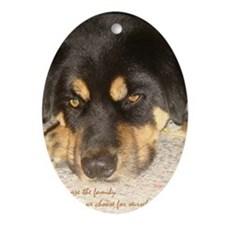 sympathy family Oval Ornament