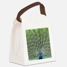 IMG_7409 Canvas Lunch Bag