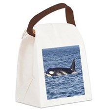 IMG_9350 Canvas Lunch Bag