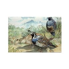 Quail Rectangle Magnet