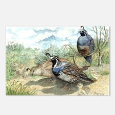 Quail Postcards (Package of 8)