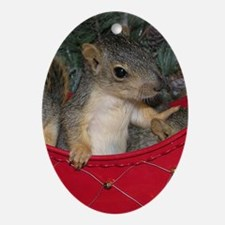 Squirrel in red Christmas Sleigh Oval Ornament