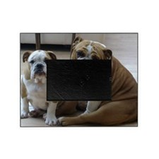 0 - cover - its_a_dogs_life_002 Picture Frame