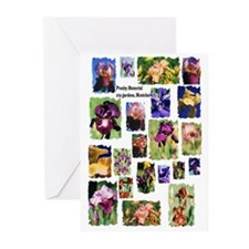 Iris Greeting Cards (Pk of 10)