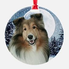 Gracie2010Orn Ornament