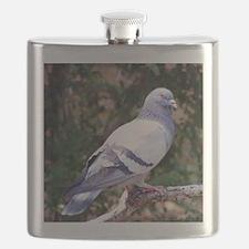 PigeonPil Flask