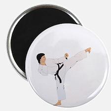 ikick(blk) Magnet