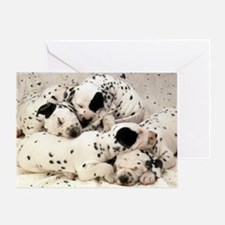 Dalmation lg fr print Greeting Card