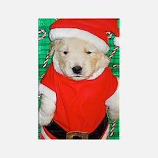 Santa Claus Funny Golden Retrieve Rectangle Magnet
