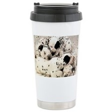 Dalmation sm fr pan print Travel Mug