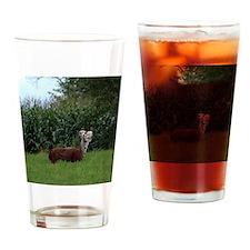 2 headed alpaca Drinking Glass