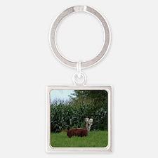 2 headed alpaca Square Keychain