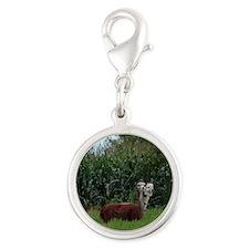 2 headed alpaca Silver Round Charm
