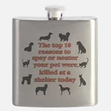 10 reasons to spay_white Flask