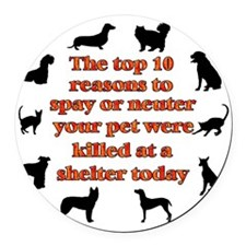 10 reasons to spay_white Round Car Magnet