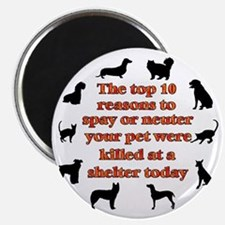 10 reasons to spay_white Magnet