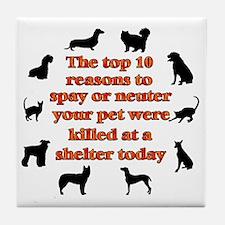 10 reasons to spay_white Tile Coaster