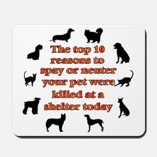 10 reasons to spay_white Mousepad