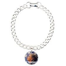 Hillary Destiny Charm Bracelet, One Charm