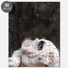 BD Prin journal Puzzle