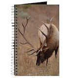Elk Journals & Spiral Notebooks