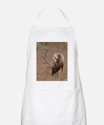 Number 10  mspd Apron