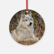 Wolf 10x10 Round Ornament